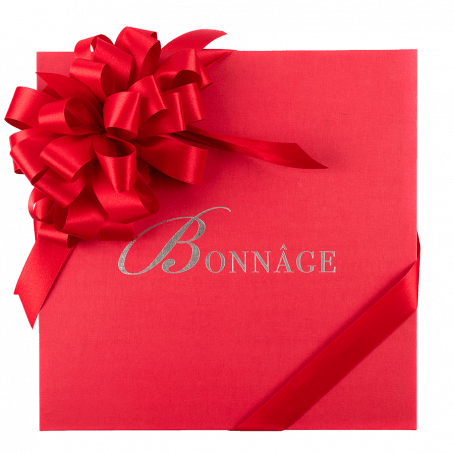Medium Red gift box with red ribbon bow
