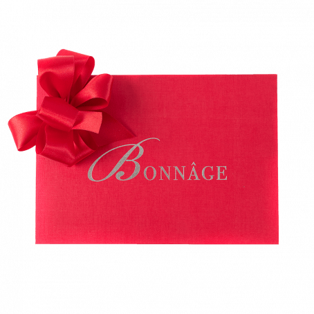 Small Red gift box with red ribbon bow
